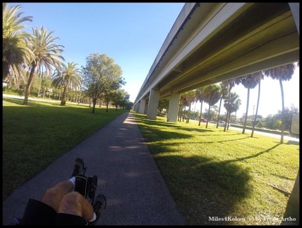 unter der Metrorail : Schattenfahren :-)