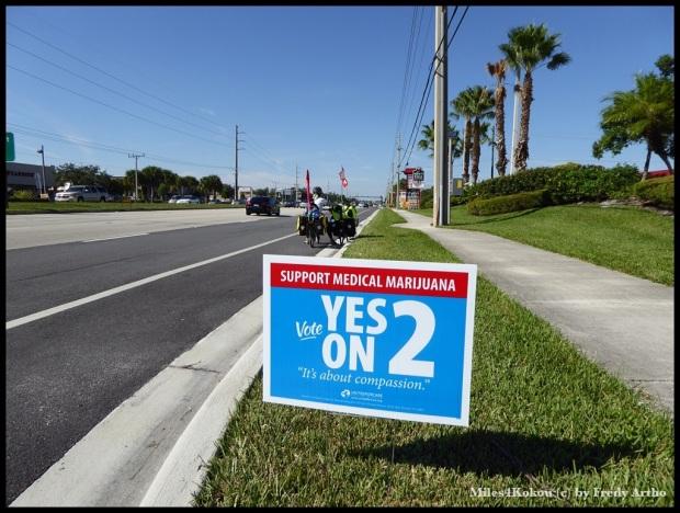 """Viele Schilder künden Abstimmungen an, unter anderem zum Thema """"Marihuana zu med. Zweck"""""""