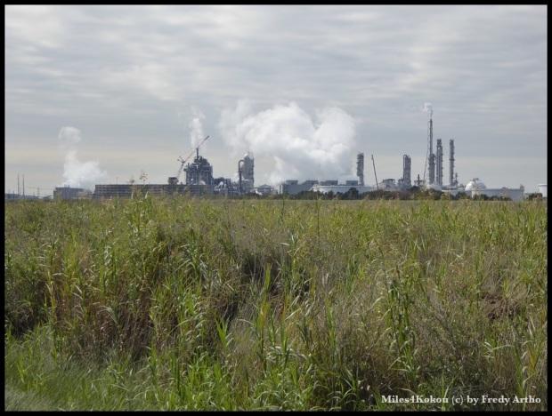 Port Arthur: Viele grosse Fabriken für da Öl- und Gasgeschäft der Gegend.