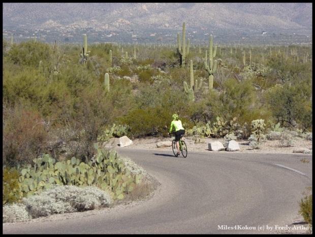 Christine fuhr voraus und warnte mich vor engen Kurven oder steilen Anstiegen.