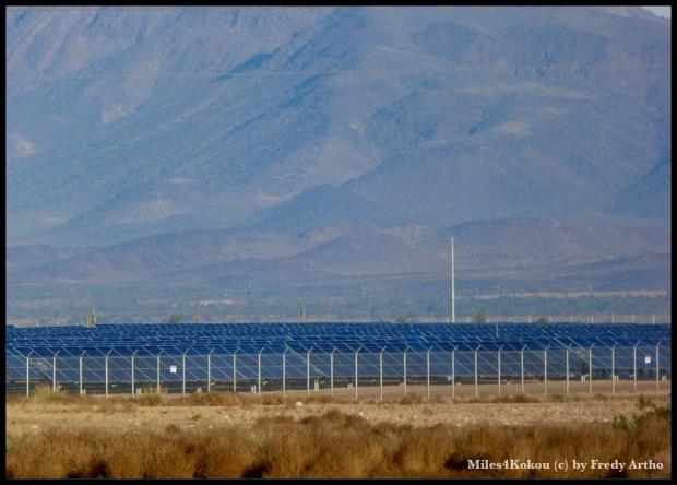 Eine risige Anlage mit Sonnenkollektoren.