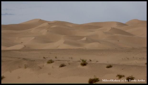 Das könnte auch in Nordafrika sein.