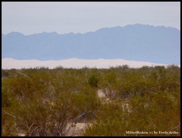 Die Dünen am Fusse der Berge, die den aufgewirbelten Sand aufhalten ziehen sich bis zum Horizont hin.