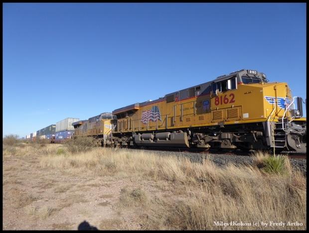 Der Zug von Chris mit seinen 74 Wagen. Die meisten doppelstöckig mit grossen Containern beladen. Sorry Chris, i did not take a picture with you :-(