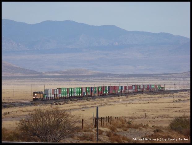 Hier konnte ich mal einen Zug in seiner ganzen Länge fotografieren: 92 Wagen, fast alle mit zwei Containern!