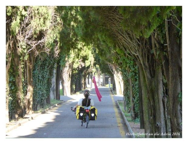 Radweg durch einen Park in Monfalcone
