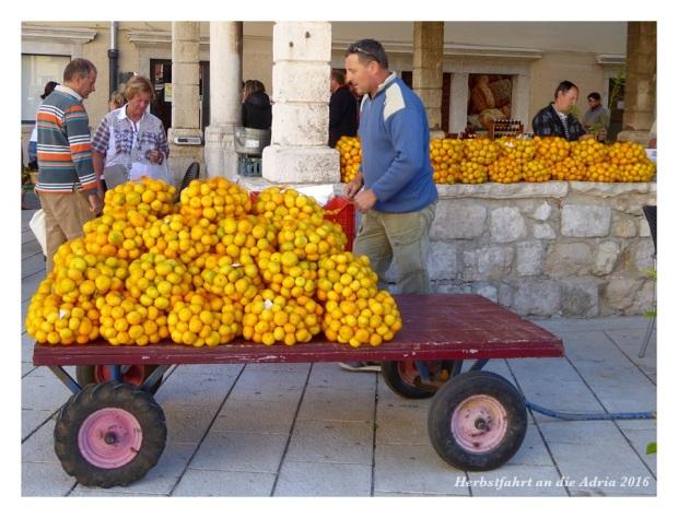Die Ernte ist bereit zum Verkauf